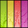 Spring blossom banners Royalty Free Stock Photos