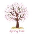 Spring blossom cherry tree vector