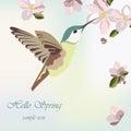Spring Blossom Flowers and hummingbird