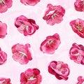 Spring blossom seamless background