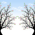 Spring Blossom Tree Royalty Free Stock Image