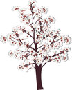 Spring blossoming tree on white background illustration with Stock Image
