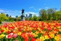 Spring in Boston Public Garden Royalty Free Stock Photo