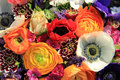 Spring bouquet in bright colors with ranunculus and anemones Royalty Free Stock Photo