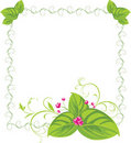Spring bouquet in the decorative frame Royalty Free Stock Photography