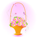 Spring bouquet of pink flowers in a basket. Stock Images