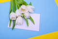 Spring bouquet of white tulips with green leaves