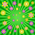 Spring Burst Royalty Free Stock Photo