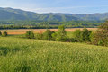 Spring, Cades Cove Royalty Free Stock Photo