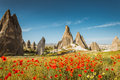 Spring in cappadocia turkey rock formations and red flowers Stock Photography