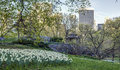 Spring in central park new york city Stock Image