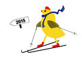 Spring chicken downhill all the way - skis, 2015. Royalty Free Stock Photo