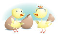 Spring chicks Stock Image