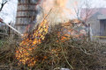 Spring cleaning of the garden burning remains from autumn in Stock Photo