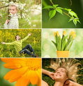 Spring collage Royalty Free Stock Image