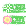 Spring collection with flowers signs green drawn labels banners text in white and pink daisy business shopping seasonal concept Stock Photos