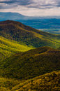 Spring colors in the Appalachians,  in Shenandoah National Park, Virginia. Royalty Free Stock Photo