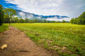 Spring Comes To Cades Cove Royalty Free Stock Photo