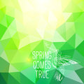 'Spring comes true' abstract polygonal background with Bird. Can Stock Image