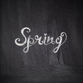 Spring concept chalk drawing card with spring lettering on ch chalkboard blackboard greeting hand drawn letters Stock Photo