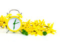 Spring concept with clock and yellow flowers forsythia on white Stock Image