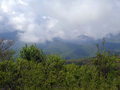 Spring in the crimean mountains mountain forest before rain Royalty Free Stock Photos