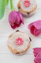 Spring Cupcakes Royalty Free Stock Photography