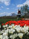 A spring day in Holland Michigan Royalty Free Stock Photo