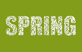SPRING. Decorative Font made of swirls and floral elements on a green background Royalty Free Stock Photo