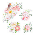 Spring delicate bouquets and cute robin bird vector design objects