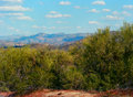 Spring in the desert arizona mountain valley Royalty Free Stock Photo