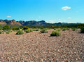 Spring in the desert arizona mountain valley Stock Photos