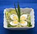 Spring eggs and green onion Stock Image
