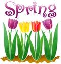 Spring/eps