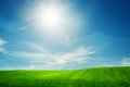 Spring field of green grass blue sunny sky fresh landscape background theme Royalty Free Stock Photos