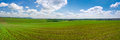 Spring field panorama beautiful landscape of agrarian with cloudy sky Royalty Free Stock Image