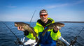 Spring fishing cod scenery Royalty Free Stock Photo
