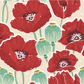 Spring floral seamless pattern with poppy Royalty Free Stock Photo