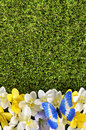 Spring flower border background with butterfly, grass copy space Royalty Free Stock Photo
