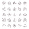 Spring flower thin line vector icons set