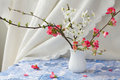Spring flowering branches vase Royalty Free Stock Image