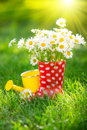 Spring flowers beautiful bunch of in red boots Royalty Free Stock Photo