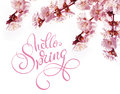 Spring flowers border and text Hello Spring. Calligraphy lettering