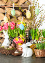 Spring flowers with easter bunny and eggs decoration tulips snowdrops narcissus blooms on white background Royalty Free Stock Photo
