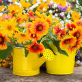 Spring flowers frame in yellow watering can Stock Image