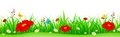 Spring flowers and grass header Royalty Free Stock Photo