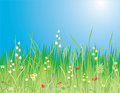 Spring. Flowers & grass - Vector Royalty Free Stock Photo