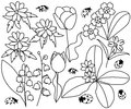 Spring flowers and ladybirds set  illustration Royalty Free Stock Photo