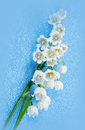 Spring flowers lily of the valley on blue background silk Royalty Free Stock Images