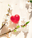 Spring flowers and red heart candle on wooden table Royalty Free Stock Photos